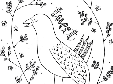 BlackkBird   Kerry Hugill   Design and Creative Services   Design and Illustration